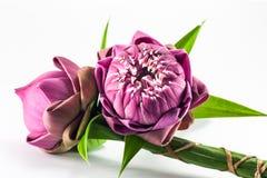 Flor de lótus cor-de-rosa foto de stock royalty free