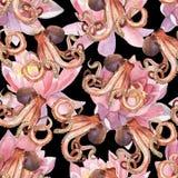Flor de lótus da aquarela e polvo Foto de Stock Royalty Free