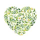Flor de la acuarela y corazón amarillos de las hierbas Imagen de archivo