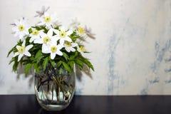 Flor de la anémona del molino de viento - ramo en una tabla de madera marrón Fotografía de archivo libre de regalías