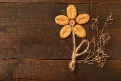 Flor de la avena Imagenes de archivo