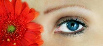 Flor de la belleza Fotos de archivo libres de regalías