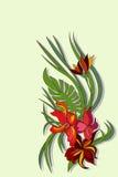 Flor de la belleza del vector Stock de ilustración
