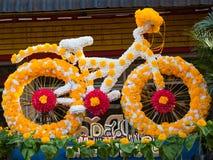 Flor de la bicicleta Foto de archivo libre de regalías