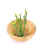 Flor de la cebolla en el cuenco de madera aislado en el fondo blanco Foto de archivo libre de regalías
