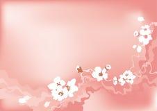 Flor de la cereza stock de ilustración