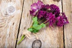 Flor de la clemátide púrpura en fondo rústico de madera Fotografía de archivo