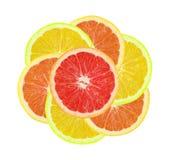 Flor de la fruta cítrica Fotos de archivo