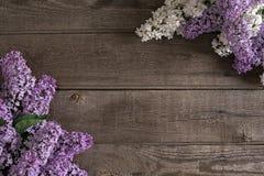 Flor de la lila en fondo de madera rústico con el espacio vacío para el mensaje de saludo Visión superior Foto de archivo libre de regalías