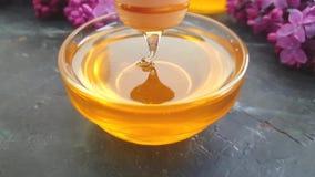 Flor de la lila de la miel en el fondo concreto negro, composición almacen de video