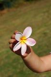 Flor de la mano del niño Fotografía de archivo