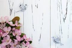 Flor de la manzana de la primavera con los pájaros de los pares en fondo de madera del viejo vintage Fotos de archivo