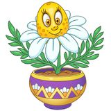 Flor de la margarita blanca de la historieta libre illustration