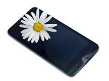 Flor de la margarita en la pantalla negra del teléfono Foto de archivo