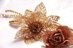 Flor de la Navidad Imagen de archivo
