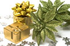 Flor de la Navidad del wth del rectángulo de regalo Foto de archivo libre de regalías