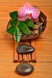 Flor de la orquídea, guijarros en la cáscara del coco y palillos de canela Fotos de archivo libres de regalías