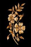 Flor de la paja Imagen de archivo