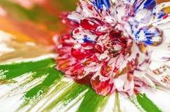 Flor de la pintura Imágenes de archivo libres de regalías