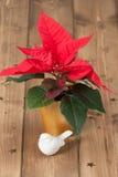 Flor de la poinsetia Símbolo de la Navidad De madera Fotografía de archivo