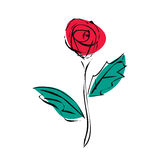 Flor de la rosa del rojo del bosquejo de esquemas negros Imagen de archivo libre de regalías