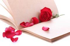 Flor de la rosa del rojo en la página del papel en blanco para creativo Imágenes de archivo libres de regalías