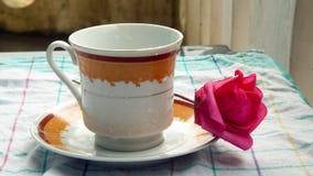 Flor de la rosa del rojo en plato del té imagen de archivo