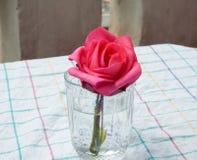Flor de la rosa del rojo encendido en vidrio Foto de archivo libre de regalías