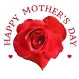 Flor de la rosa del rojo para el día de madres Imagen de archivo libre de regalías