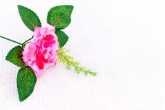 Flor de la rosa del rosa del primer en el pañuelo blanco de la textura Fotografía de archivo libre de regalías