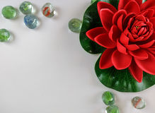 Flor de la sobremesa Foto de archivo libre de regalías