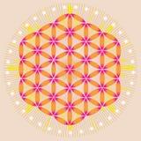 Flor de la vida en espacio brillante stock de ilustración