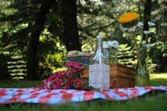 Flor de las magdalenas de la comida campestre Foto de archivo libre de regalías