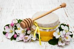 Flor de las manzanas con la miel Imágenes de archivo libres de regalías