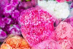 Flor de las rosas Fotografía de archivo