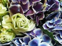 Flor de las rosas y de las orquídeas Foto de archivo