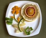 Flor de los agrios con la decoración de la menta Fotografía de archivo libre de regalías