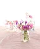 Flor de los guisantes de olor Imágenes de archivo libres de regalías