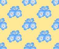 Flor de los ojos de azules cielos de Nemophila en fondo amarillo Ilustración del vector libre illustration