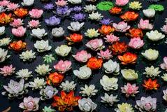 Flor de loto colorida en el río Fotos de archivo