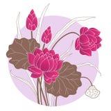 Flor de loto decorativa Fotografía de archivo