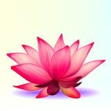 Flor de lótus Photo-realistic Fotos de Stock Royalty Free
