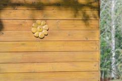 Flor de madera original en la pared Imagenes de archivo