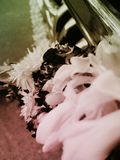Flor de Malai imágenes de archivo libres de regalías