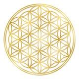 Flor de oro de la vida ilustración del vector