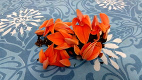 Flor de Palas perto do vatpara Imagem de Stock Royalty Free