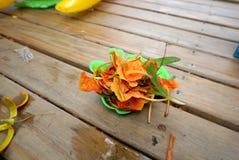 Flor de pavo real en el cuenco del juguete Imagen de archivo libre de regalías