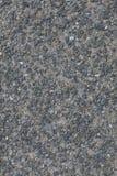 Flor de pedra Imagem de Stock Royalty Free
