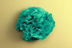 Flor de Peper Imágenes de archivo libres de regalías