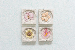 Flor de piedra Fotografía de archivo